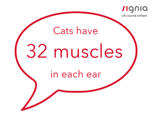 cats have 32 muscles in each ear
